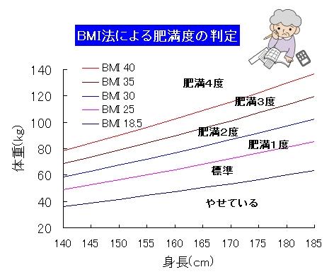 度 bmi 肥満